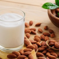 Recettes de lait végétal maison : amande, noisette et avoine.