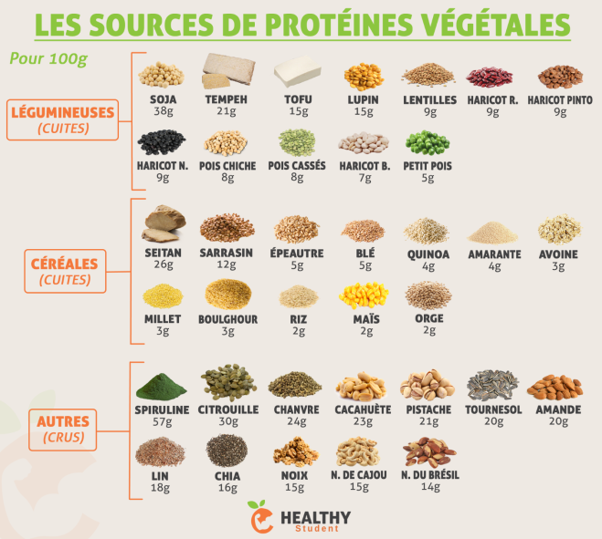 sources_de_proteines_vegetales-1